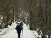 escursione-norcia-castelluccio-sibillini-valle-patino