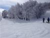 ciaspolata-sibillini-escursione-neve1