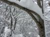 ciaspolata-sibillini-umbria-trekking-outdoor11