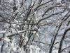 ciaspolata-sibillini-umbria-trekking-outdoor4
