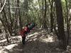 trekking-conero-pineta