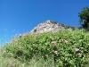 Escursioni|Costiera Amalfitana|Positano