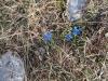 escursione-norcia-monte-patino-15
