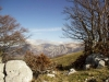 escursione-monte-cardosa-sibillini9