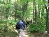 Escursione-monte-cucco-umbria-parco-naturale