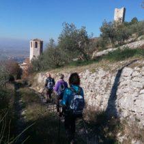 Ponte dell'Immacolata in Umbria: i sentieri degli ulivi, le vie di Francesco