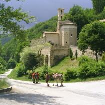 """L'anello della Valle del Campiano """"Castoriana"""" – Abbazia di S.Eutizio"""