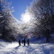 Primo dell'anno ciaspolatoso tra altopiani, boschi e caldi rifugi