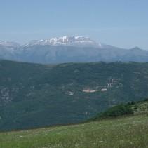 L'escursione sul M.Coscerno 8 Giugno '14