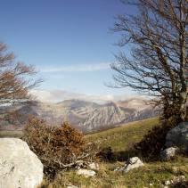 Domenica scorsa (23.11.14) sul Monte Cardosa