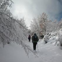 Il giro di oggi 28.12.14 sui boschi tra Norcia e Cascia