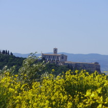 L'arrivo ad Assisi del cammino di S.Francesco