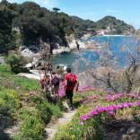 escursione isolta d'elba trekking