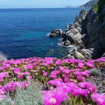 Il trek all'Isola d'Elba del primo Maggio