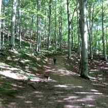 Sabato 3 Ottobre, che bellissima escursione!!