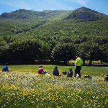 Il grande anello del Monte Cucco: faggete stupende, torrenti e la spettacolare cima!