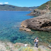 Trek grandioso all'Isola d'Elba… per camminatori abituati!