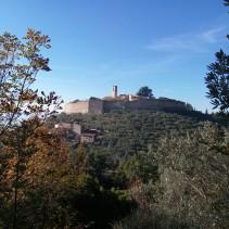 Trekking da Spoleto ad Assisi: i sentieri degli ulivi, le vie di Francesco
