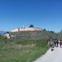 Ponte dell'Immacolata tra Spoleto e Assisi: i sentieri degli ulivi, le vie di Francesco