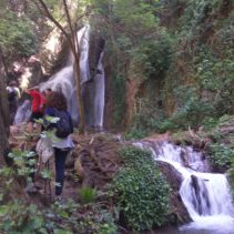 i sentieri degli ulivi, le vie di Francesco: da Sassovivo a Spello
