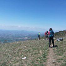 i sentieri degli ulivi, le vie di Francesco: da Spello ad Assisi