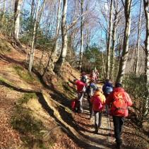 Monte Cucco: boschi fiabeschi e torrenti giocosi!