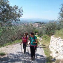 Da Spello al Monte Subasio per l'acquedotto romano e Collepino (per camminatori abituati)