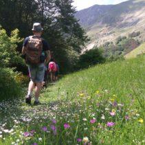 Da Norcia a Castelluccio: domenica scorsa di nuovo nel paradiso della Sibilla!