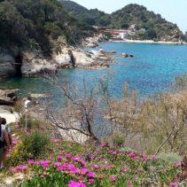 Trekking all'Isola d'Elba: un sogno nella gemma del Tirreno