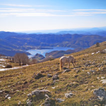 Monte Navegna: il balcone degli Appennini sospeso sui laghi