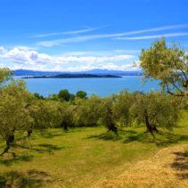 Tramonto al Lago Trasimeno: in cammino tra il verde e il blu!